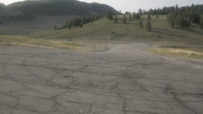 Webcam Old Limber Pine: Logan Summit
