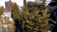 Murzasichle: Rzeczpospolita - Ski - Overdag