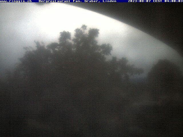 Linden: Ringgis - Blick Richtung Berner Alpen