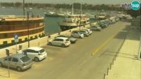Zambratija: Umag seafront, marine - Overdag