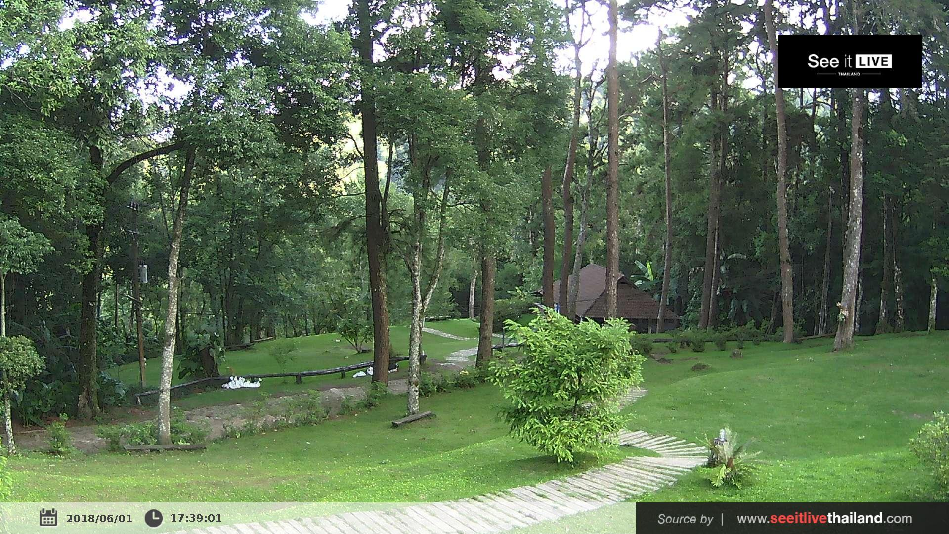 Webcam บ้านดอยสุเทพ: National Park Doi Suthep Pui − View