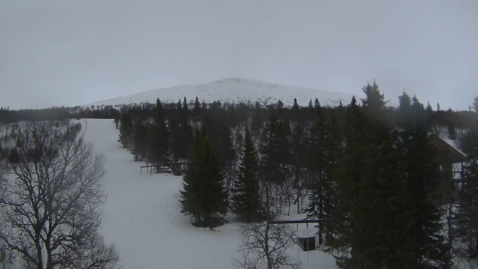 Webcam Bustadmon: Buustamons Fjällgård