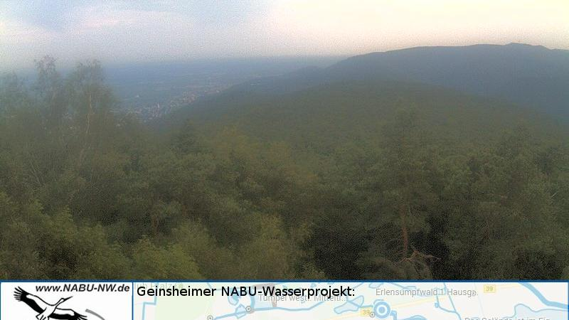 Webkamera Weinstraße › South-West: Biosphärenreservat Pfälze