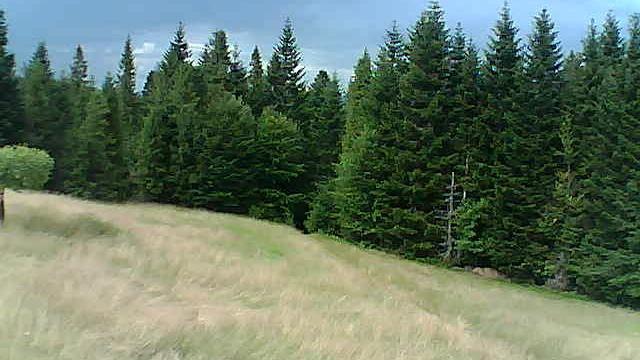 Webkamera Suchora › North-East: Lesser − Voivodeship