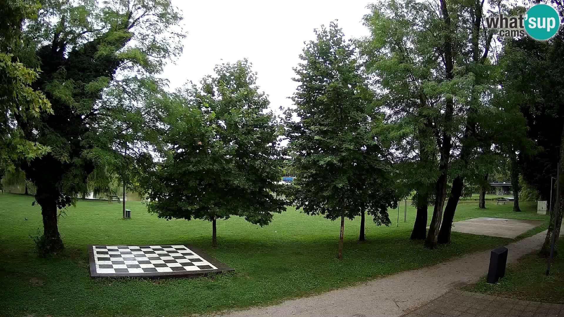 Webkamera Karlovac: Kupalište Korana