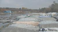 Kingston › North: Collins Bay Marina - El día