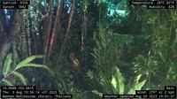 Nakhon Ratchasima: Korat Web Cam - Actuelle