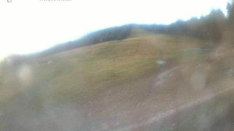 Webcam Râuşor
