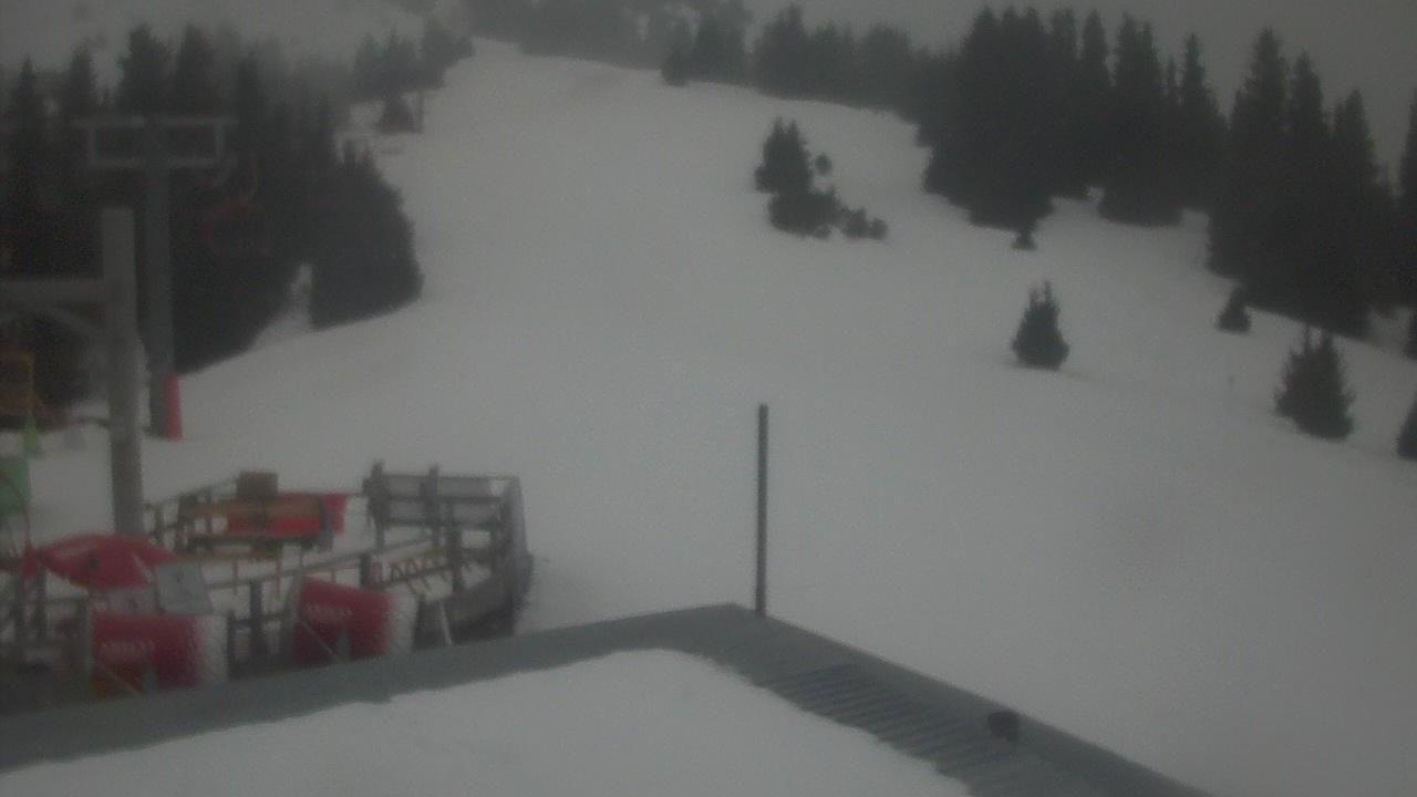 Webcam Жолголот: Karakol Ski