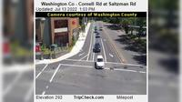 Cedar Mills: Washington Co - Cornell Rd at Saltzman Rd - Overdag