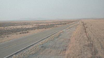 Webcam Curlew Junction: Curlew (SW)