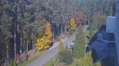 Daylight webcam view from Skok: Myadzyel − Санаторий Сосны