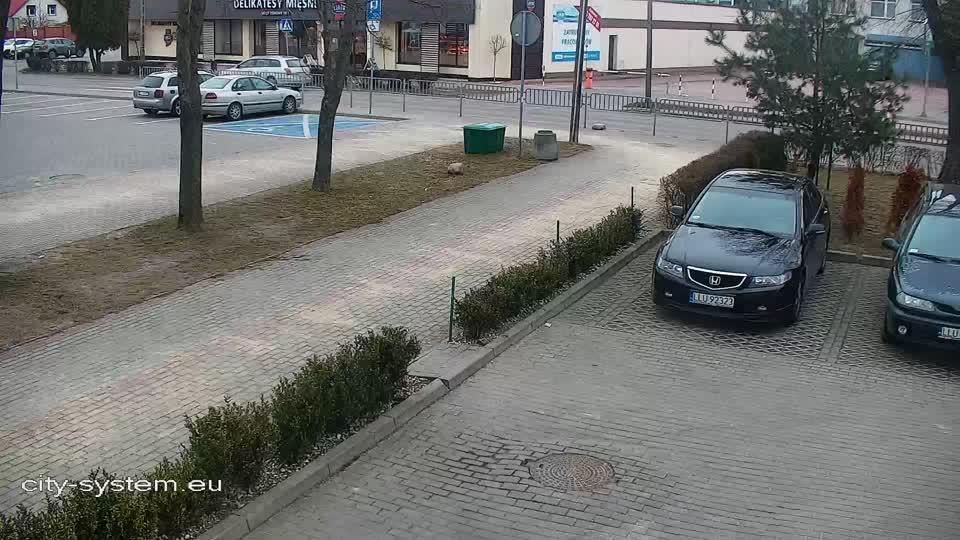 Webkamera Wójtostwo: Przemysłowa St., Łuków