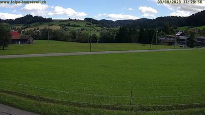 Bäretswil: Zürich - Langlaufloipe