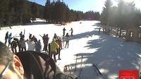 Matemale: La Quillane Ski Station - Col de la Llose - ski de fond - Dia