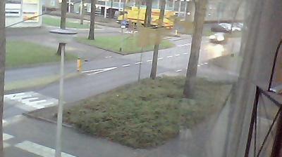 Webcam Zielhorst: Shorties Webcam