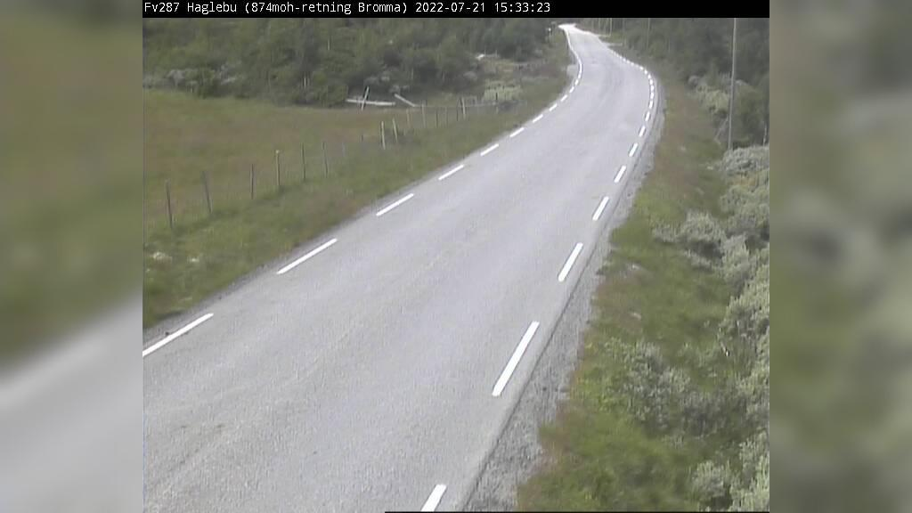 Webkamera Haglebu: F211 − Flå kommune, 882 moh