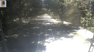 Vue webcam de jour à partir de Buzău: Buzau Parcul Crang
