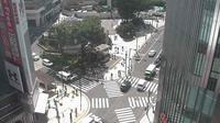 Shinjuku - Actuales