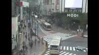 Dernière vue de jour à partir de Shibuya: しぶやえき 東京都, 日本