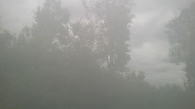 Vista de cámara web de luz diurna desde Säriswil › North: Ittigen