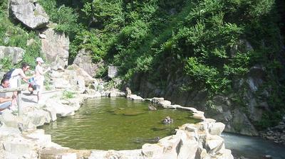 Aktuelle oder letzte ansicht von Yamanouchi: Japanese Macaque (snow monkey) in hot spring at Jigokudani Monkey park in