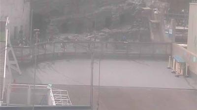 Webcam Higashi-asahikawa: Asahiyama Zoo (旭山動物園)