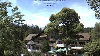 Kniebis > West: Waldblick - Aktuell