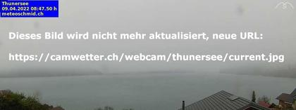 Thunersee › Ost