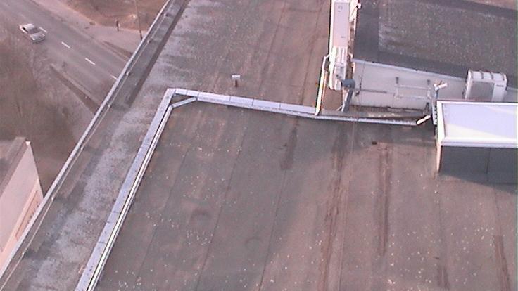Webkamera Skorupy: Piasta − view from 12th floor