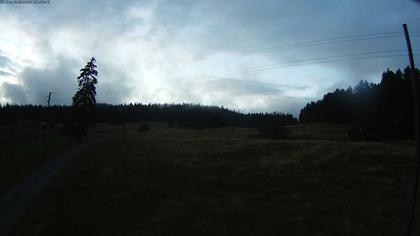 Saint-Cergue: Col de la Givrine - La Trélasse - Jura vaudois Natural Regional Park