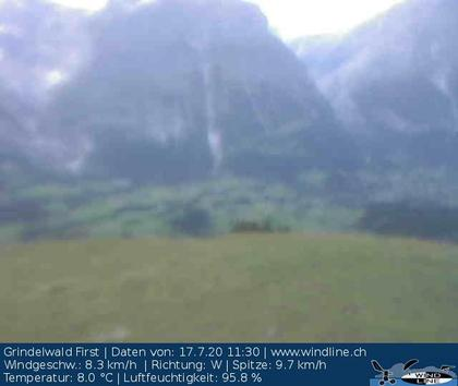 Grindelwald: First