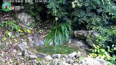 Peking Huidige Webcam Image