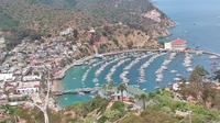 Avalon: Catalina Island, CA Harbor and Island Cam - Dia
