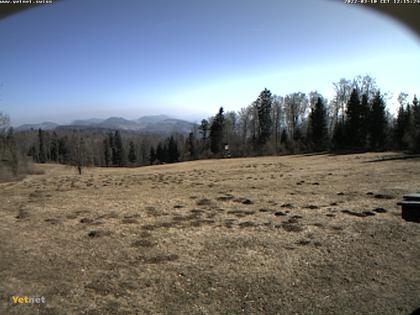 Erlinsbach › Nord-Ost: Barmelweid