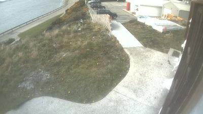Vista de cámara web de luz diurna desde Stanley: Harbour, Ross Road