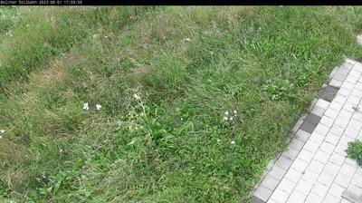 Thumbnail of Schonau im Schwarzwald webcam at 4:58, Jan 23