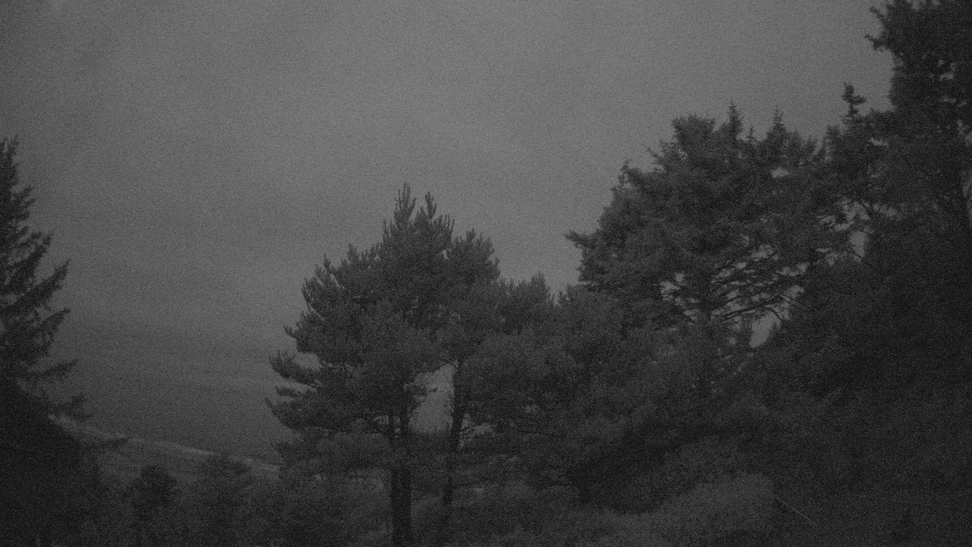Yaquina Beach Cam - Newport, Oregon WebCam