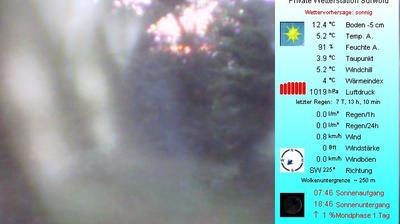 Webkamera Börgermoor: Surwold-Wetter