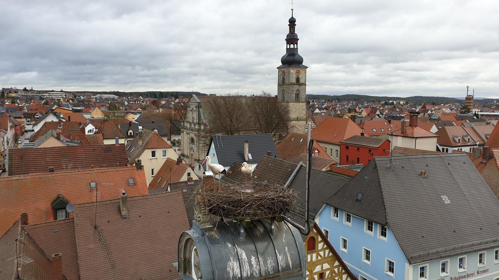 Webcam Höchstadt: Storchennest