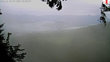 Feusisberg › Ost: Zürichsee