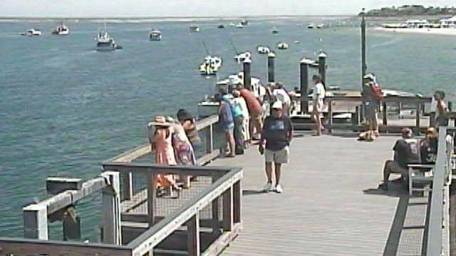 Webcam Chatham