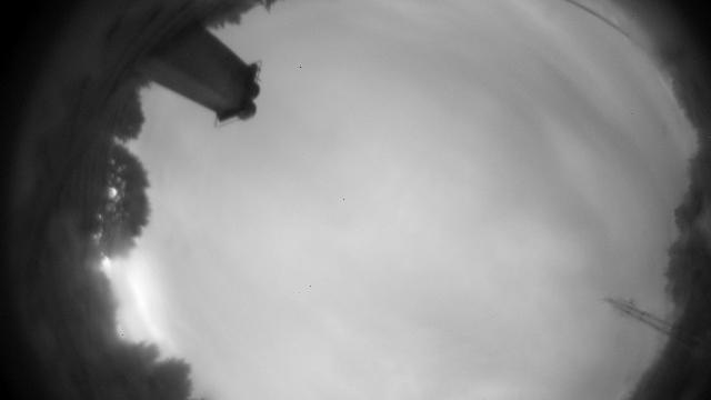 Webcam Vidojevica