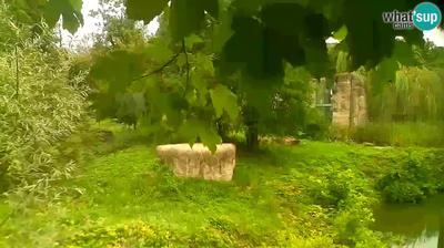 Vue webcam de jour à partir de Zagreb: Lion