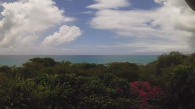 Vue webcam de jour à partir de Sainte Anne › South: vue mer vers le sud