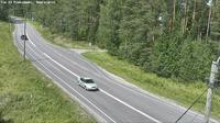 Pieks�m�ki: Tie - Naaraj�rvi - Jyv�skyl��n - Dagtid
