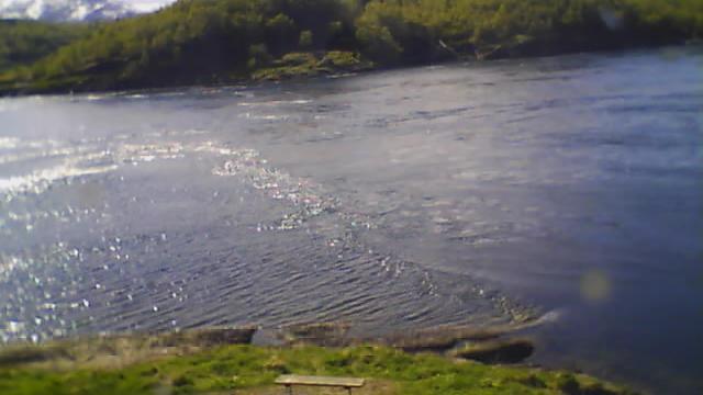 Webcam Saltstraumen › West: fra Kafe Kjelen mot Oksbåsen