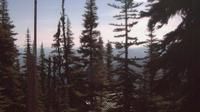 Telkwa: Hudson Bay Mountain - Jour