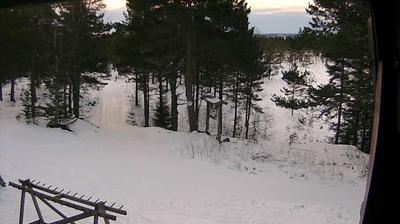 Webkamera Drammen: Tverken