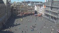 Ville de Bruxelles - Stad Brussel: Webcam at the Grand-Place of Brussels - Overdag
